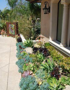 A Succulent Wall - contemporary - landscape - los angeles - BlueGreen Landscape Design