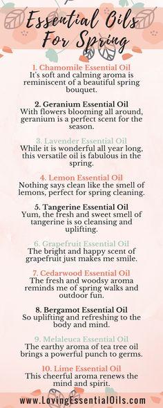 Top 10 Essential Oils For Spring with Diffuser Blends by Loving Essential Oils |  chamomile, geranium, lavender, lemon, lime, grapefruit, cedarwood, melaleuca (tea tree), tangerine, bergamot