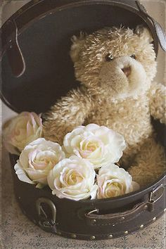 Ana Rosa - Sweet teddy & roses vignette.