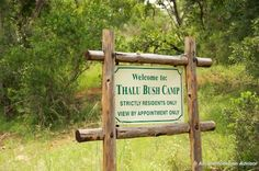 Thalu Bush camp is tucked away from other visitors along a private road. Pure seclusion!