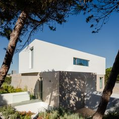 Project designed by Russell Jones - House in Obidos