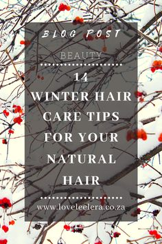 Winter is upon us and this weather can be damaging and drying for curly and natural hair. Follow these helpful 14 Winter Hair Care Tips for Your Natural Hair to keep your hair well moisturized, protected, and healthy when the weather outside is unpleasant. Here is how to handle your natural hair, what to look out for and when to do what.  #TheLOVELEELERABlog #Blogger #Blog #NaturalHairCare Sulfate Free Shampoo, Mild Shampoo, Start Of Winter, Hair Starting, Brittle Hair, Natural Haircare, Leave In Conditioner, Winter Hairstyles, Hair Care Tips