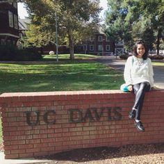 Discover UC Davis: 20 Item Bucket List   Her Campus