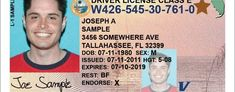 Florida Drivers License and Vehicle Registration Joe Sample, Credit Card Statement, Vehicle, Florida, The Florida, Vehicles