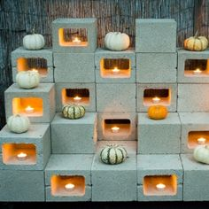 Got gourds? Add a modern, harvest-inspired warmth to your home with these 6 ways to display your pumpkins and winter squash.