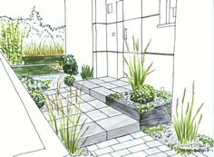 Croquis de jardin en ligne, pour petit jardin, terrasse, entrée, piscine.Conception de jardin.