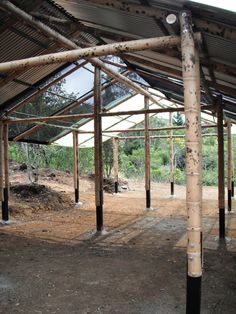 Guadua y Madera - 2014 Bamboo Architecture, Sustainable Architecture, Architecture Design, Bamboo Roof, Bamboo House, Bamboo Building, Green House Design, Bamboo Structure, Bamboo Construction