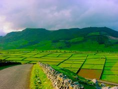Ilha Terceira: À Descoberta da Ilha Lilás