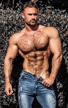 Hairy Men, Bearded Men, Hairy Hunks, Hot Country Men, Shirtless Hunks, Hommes Sexy, Muscular Men, Hairy Chest, Actor Model