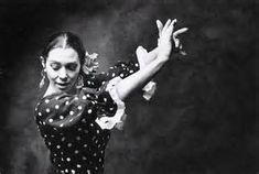 Image result for imagenes flamenco