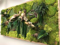 Get Aboard the Moss Wall Trend in 2019 Types Of Moss, Moss Wall Art, Moss Plant, Vertical Garden Design, Moss Terrarium, Ponds Backyard, Plant Wall, Live Plants, Garden Projects