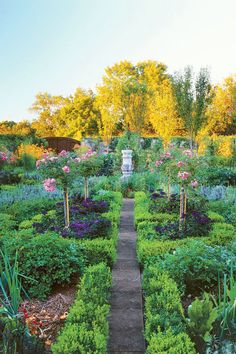 Flowers are sprinkled throughout this Connecticut garden, from the bold prelude—a moody row of rose and clematis arbors—to herb beds anchored in 'Fairy' rose standards rising above fragrant heliotrope. The homeowner also devoted ample space for purple basil beside sweet, jalapeno, and paprika peppers.