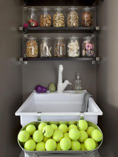 Mudroom for Dogs | Decorating and Design Ideas for Interior Rooms | HGTV