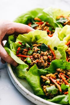 Asian Turkey Lettuce Wraps are packed with intense flavor that is almost too addicting to put down. Every bite has tender meat, crunchy veggies and a soft bib of lettuce to cover it all in a healthy combination. Healthy Food Alternatives, Good Healthy Recipes, Healthy Snacks, Nutritious Meals, Vegetarian Recipes, Asian Turkey Lettuce Wraps, Lettuce Wrap Recipes, Turkey Wraps, Healthy Lettuce Wraps
