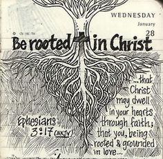 Be rooted in Christ.
