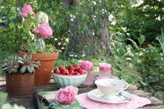 Blogpost Zeit für Rosen