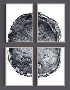 Set of 4 Prints Oak Tree Rings Black and White by DanHobdayArt