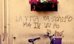 Star Walls - Scritte sui muri. — Messo male