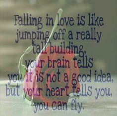 Falling in Love is Like..