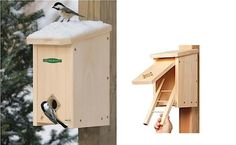 You aren't the only one looking to stay warm and safe during winter storms. Consider a roosting box to provide a haven for local birds.