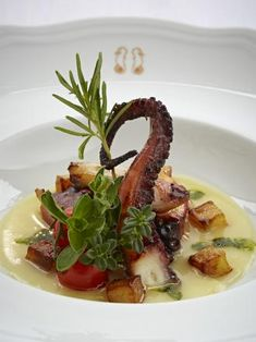 Lemon and Rosemary Scented Baby Octopus