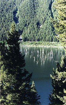 Quake Lake, Montana Earthquake changed the landscape.