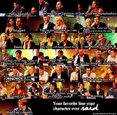 Hogwarts Alumni: Favorite Line by Harry Potter Cast. I can read them all in the right voices too. Haha.