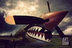 Vintage Aircraft Photographic Print: Curtiss Kittyhawk by David Bracher : - B 17, Ww2 Aircraft, Military Aircraft, Photo Avion, Shark Art, V Max, Pin Up, Air Festival, Ww2 Planes
