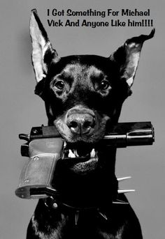 The Doberman Pinscher is among the most popular breed of dogs in the world. Known for its intelligence and loyalty, the Pinscher is both a police- favorite Doberman Pinscher, Mans Best Friend, Best Friends, True Friends, Doberman Love, Tier Fotos, Mundo Animal, Tattoo Studio, Puppy Love