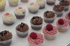 cupcakes-sans-allergene-petit-lapin-montreal-1