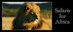 LinkSouthAfrica > Safaris for Africa Safari, African, Business, Animals, Animales, Animaux, Animal Memes, Business Illustration, Animal