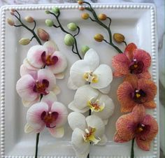 Phalaenopsis orchids, made petal by petal, with gumpaste, trying to capture every detail that has the real flowers. Life size.