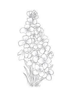 Alexandra's Art & Papercraft. Free downloads Coloring Pages To Print, Colouring Pages, Coloring Books, 3d Art Projects, Card Templates Printable, Floral Embroidery Patterns, Simple Line Drawings, Flower Sketches, Country Paintings
