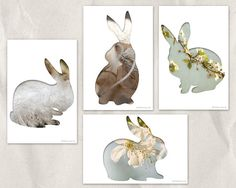 bunny card set easter postcard collage photography by bialakura, Etsy, Easter cards set - bunny silhouette postcard set - new series of collage photographs: original photography is put into an animal silhouette.