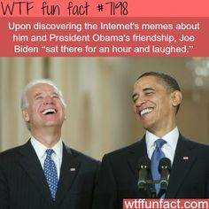 WTF Fun Facts is updated daily with interesting & funny random facts. We post about health, celebs/people, places, animals, history information and much more. New facts all day - every day! Wtf Fun Facts, Funny Facts, Funny Quotes, Funny Memes, Hilarious, Jokes, Obama And Biden, Joe Biden, Obama Funny