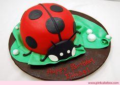 more ladybug ideas