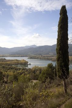 Lake Banyoles in Girona. #Catalonia