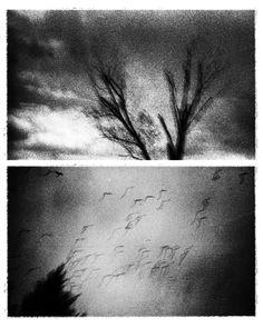 "de-salva: "" © Sotiris Lamprou """