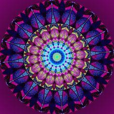 dans mon cœur ; in my heart ; no meu coração ; en mi corazón Mandala de Pierre Vermersch Digital Drawings