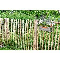 Staketenzaun Edel-Kastanie Lattenzaun, 10 Meter Rolle H: 60 cm