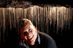 This specific spot in the Waitomo Caves is known as the Glowworm Grotto, a place where glowworms create a starry effect on the ceilings. This species is exclusively found in New Zealand and is around the size of a mosquito.