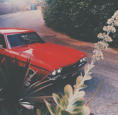 New Red Cars Vintage Aesthetic Ideas Norman Rockwell, Grunge, Baby Driver, Cheryl Blossom, Ride Or Die, Blue Aesthetic, Aesthetic Pics, Born To Die, Vintage Cars