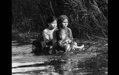 Vietnamese mother and three children wade from shelter in swamp after government troops fired into their hamlet 140 miles southeast of Saigon, Aug. 30, 1966.