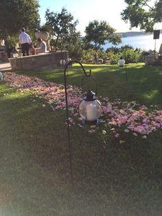 Rose petal path