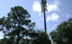 Fake trees on Houston Street | National Catholic Reporter Houston Street, Fake Trees, Towers, Catholic, Tours, Tower, Roman Catholic