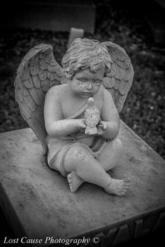 Angel at Cemetery
