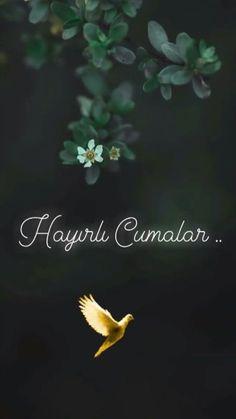 Allah Islam, Islam Quran, Jumma Mubarak Quotes, Beautiful Quran Quotes, Mubarak Images, Wallpaper Iphone Cute, Islamic Quotes, Happy Friday, Cool Words