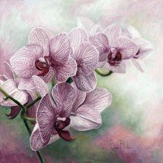Канадская художница Lucie Bilodeau