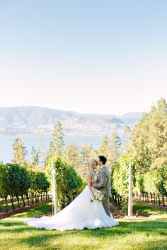 Photography : Adrian Photography | Wedding Dress : Pronovias NYC, designer Manuel Mota Read More on SMP: http://www.stylemepretty.com/canada-weddings/2014/01/27/okanagan-winery-wedding/