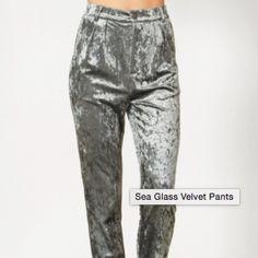 Silver Velvet pants. Brand new. Great for the holidays Pants Straight Leg